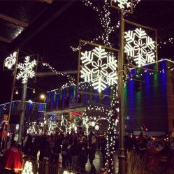 Bellevue Lights
